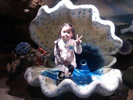 女儿在海底世界